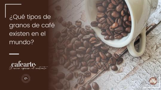 tipos de granos de cafe que existen en el mundo